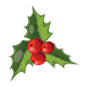 1478718092_christmas-mistletoe-icon